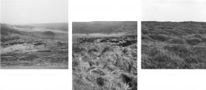 Illustration 24 : Manon Riet, « Sans titre », tirages jet d'encre pigmentaire, 54,5x54,5 cm.