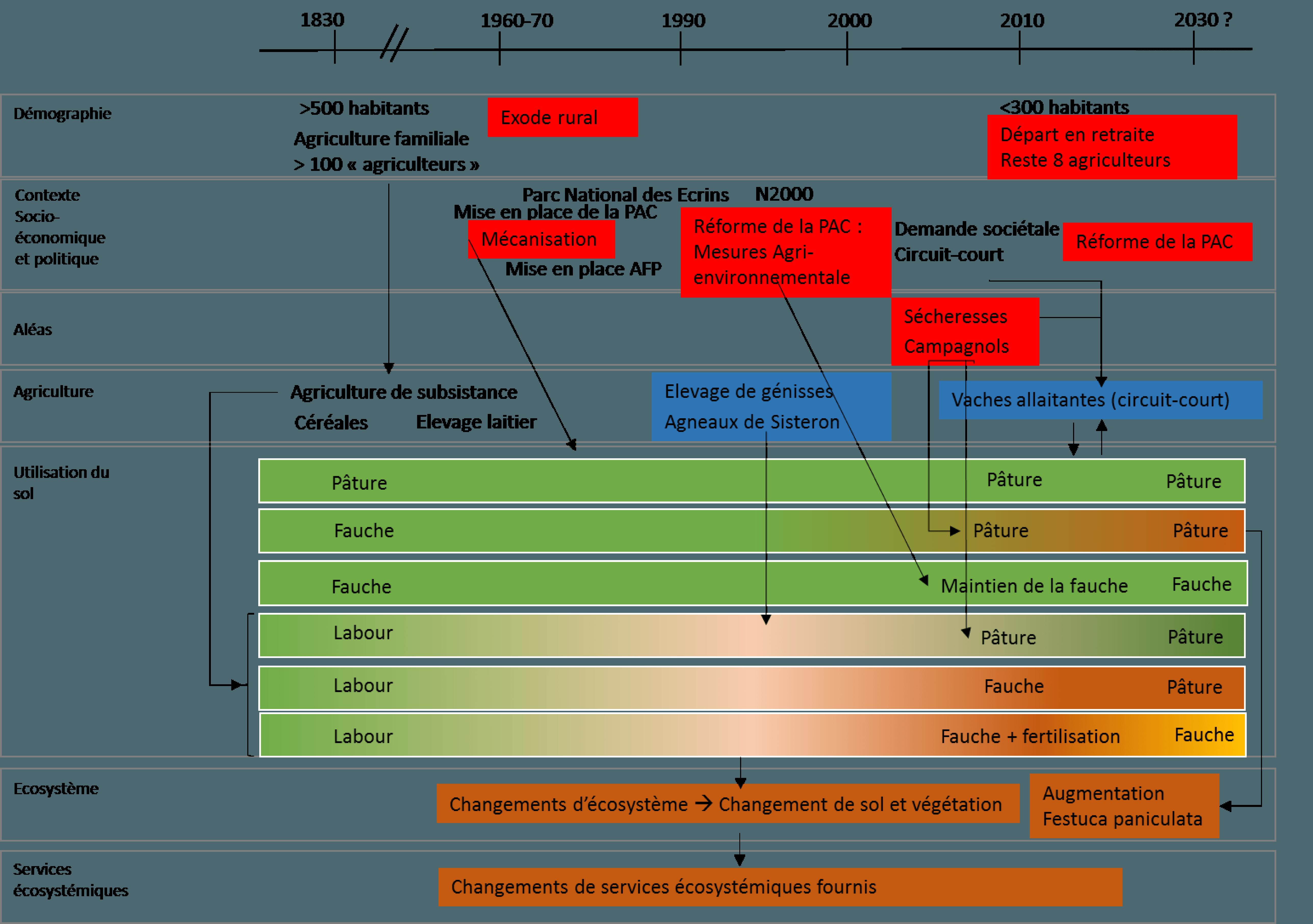 Frise 10 : Impacts des changements globaux sur l'utilisation du sol et la fourniture de services écosystémiques au col du Lautaret. Source : Pénélope Lamarque, LECA, géographie-écologie.