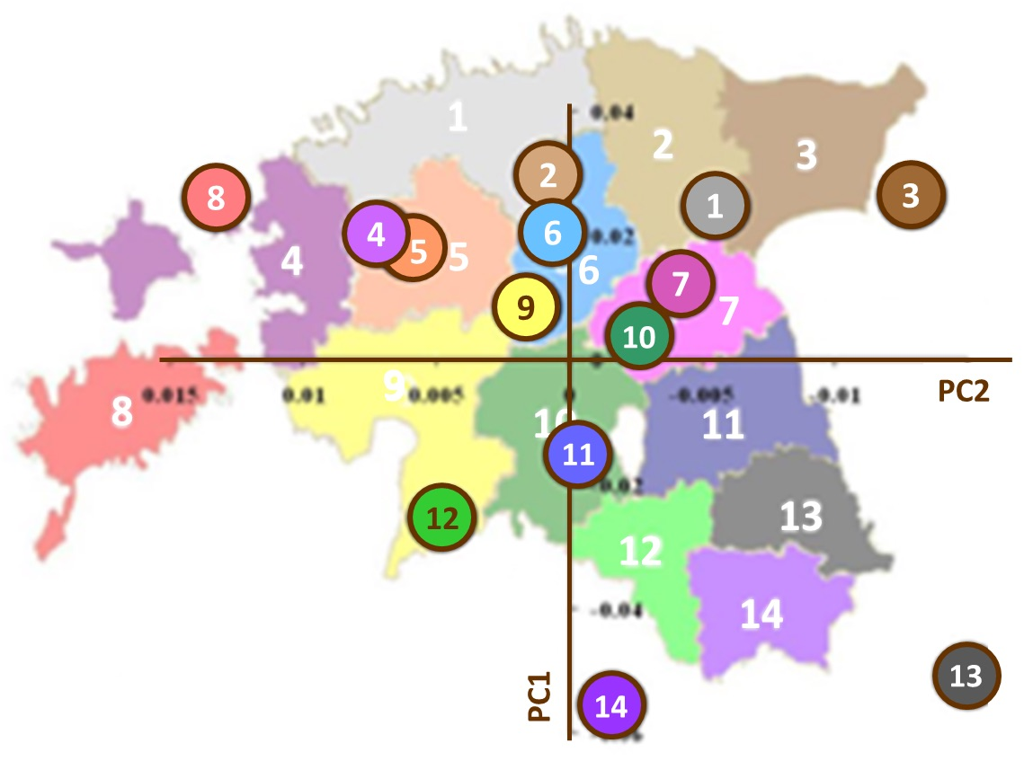 Figure 4 : Structure génétique de l'Estonie. Analyse en composantes principales (PC1 et PC2) des données génétiques issues d'un millier de personnes natives de 14 comtés d'Estonie. Les cercles colorés et numérotés représentent chacun la médiane des valeurs pour tous les individus d'un comté donné pour les deux composantes principales. La superposition de ces données génétiques avec une carte géographique de l'Estonie montre combien les proximités génétique et géographique sont corrélées. Figure adaptée de Nelis et al. 2009, p. e5472.