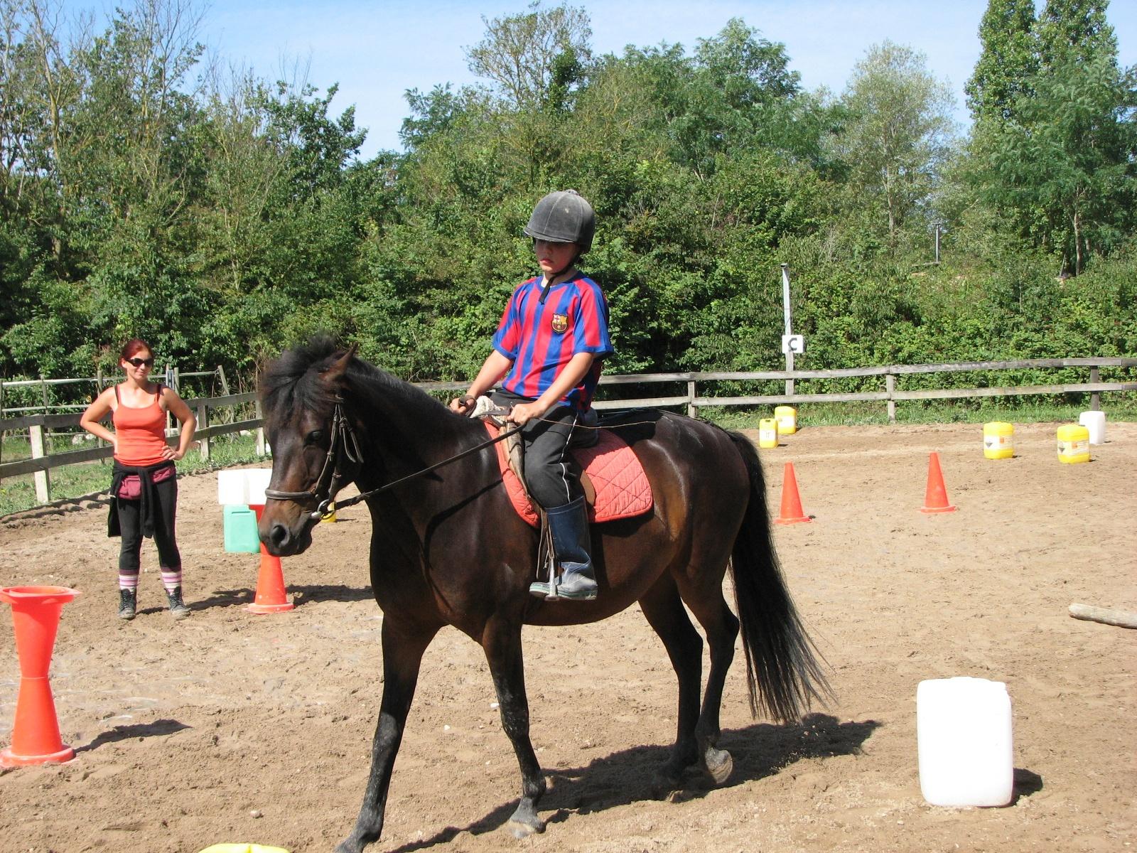 Figure 2: ... et les pratiques contemporaines dominées par une équitation de loisir en poney club. Source: Sylvine Pickel-Chevalier, 2012.