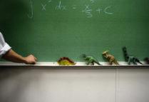 illustration Institutions scolaires.