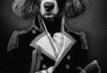 illustration Humanimalité ? Le monde, entre chiens et nous.